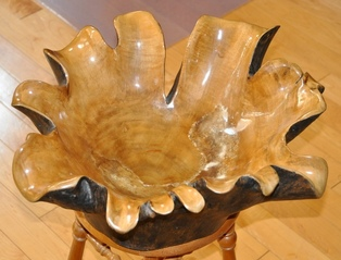 Large burl wood bowl sculpture carved out of a tree stump