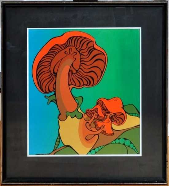 Framed serigraph of psychedelic mushrooms