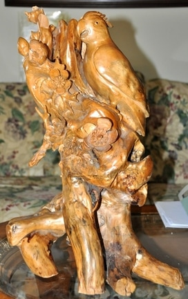 Burl wood carved sculpture of a parrot perched on a tree