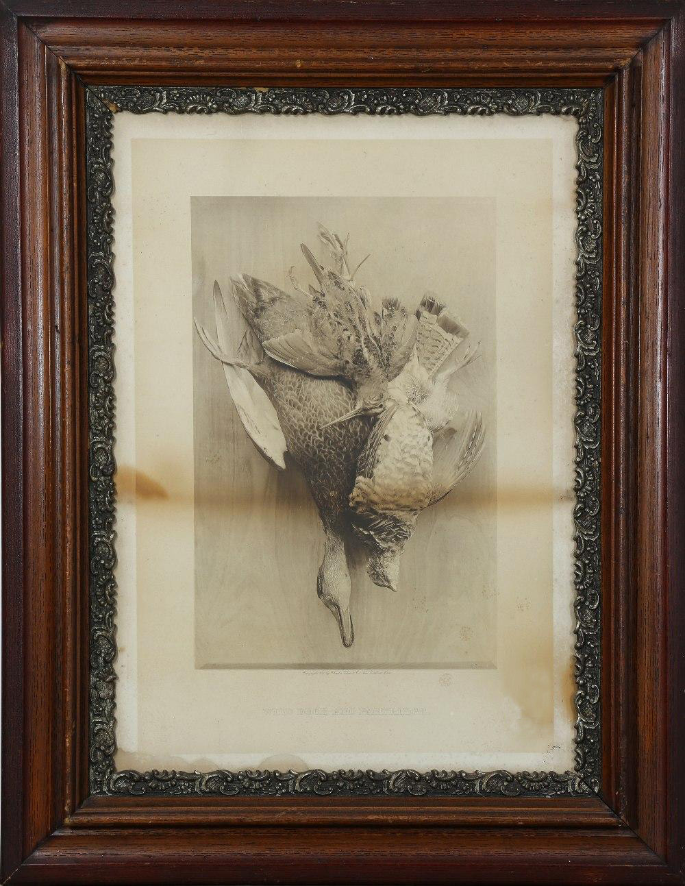 Rare late 19th century photogravure titled Wild Duck and Partridge by Charles Taber & Co.